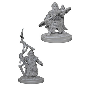 Pathfinder Deep Cuts Miniatures - Stregone Nano Maschio