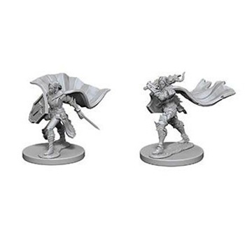 Pathfinder Deep Cuts Miniatures - Paladino Elfo Femmina
