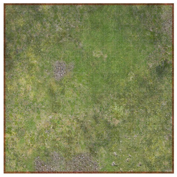 Combat Map - Forest