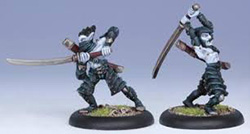 Legion of Everblight - Blighted Swordsmen (2)